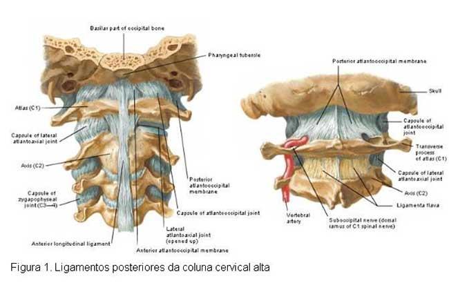 cervical interlaminar epidural steroid injection cpt code
